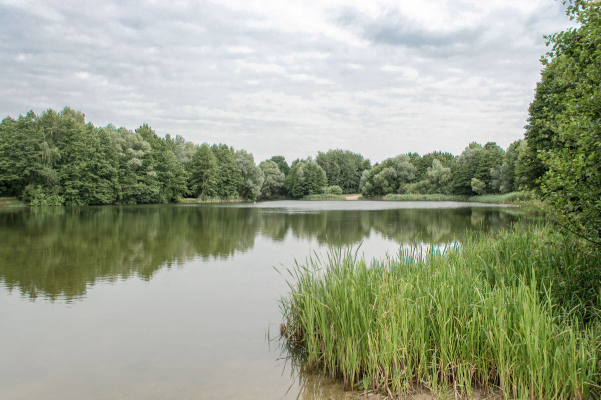 Am Kiessee in Schildow - Gemeinde Mühlenbecker Land