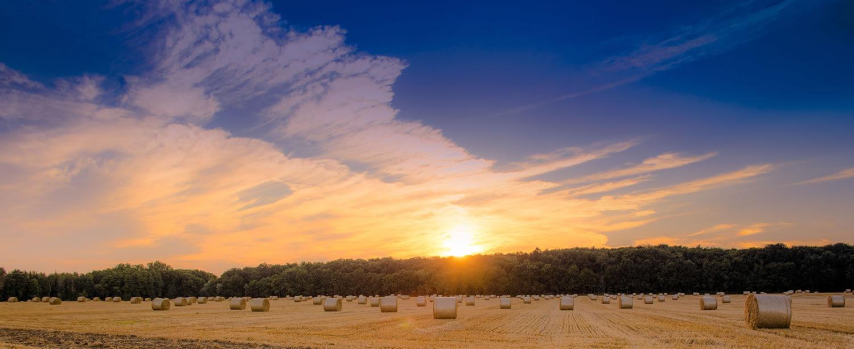 Weizenfeld bei Schönfließ nach der Ernete mit Strohballen im Sonnenuntergang in Mühlenbecker Land