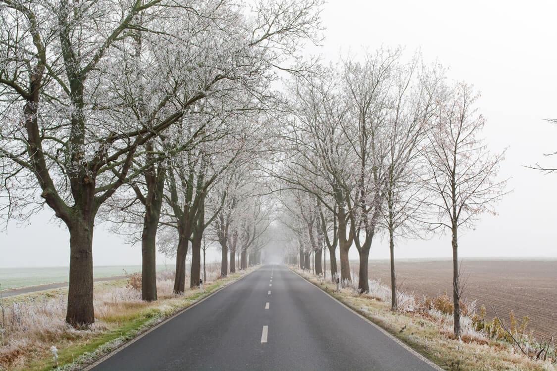 B96 bei Schildow im Winter - Makler Schildow