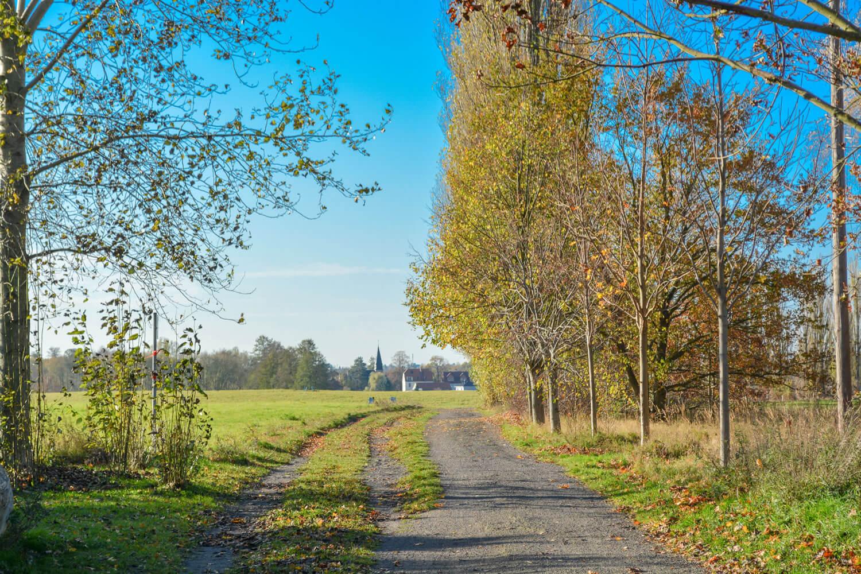 Wanderweg in Schildow - Makler Schildow